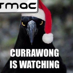 CURRAWONG CHRISTMAS